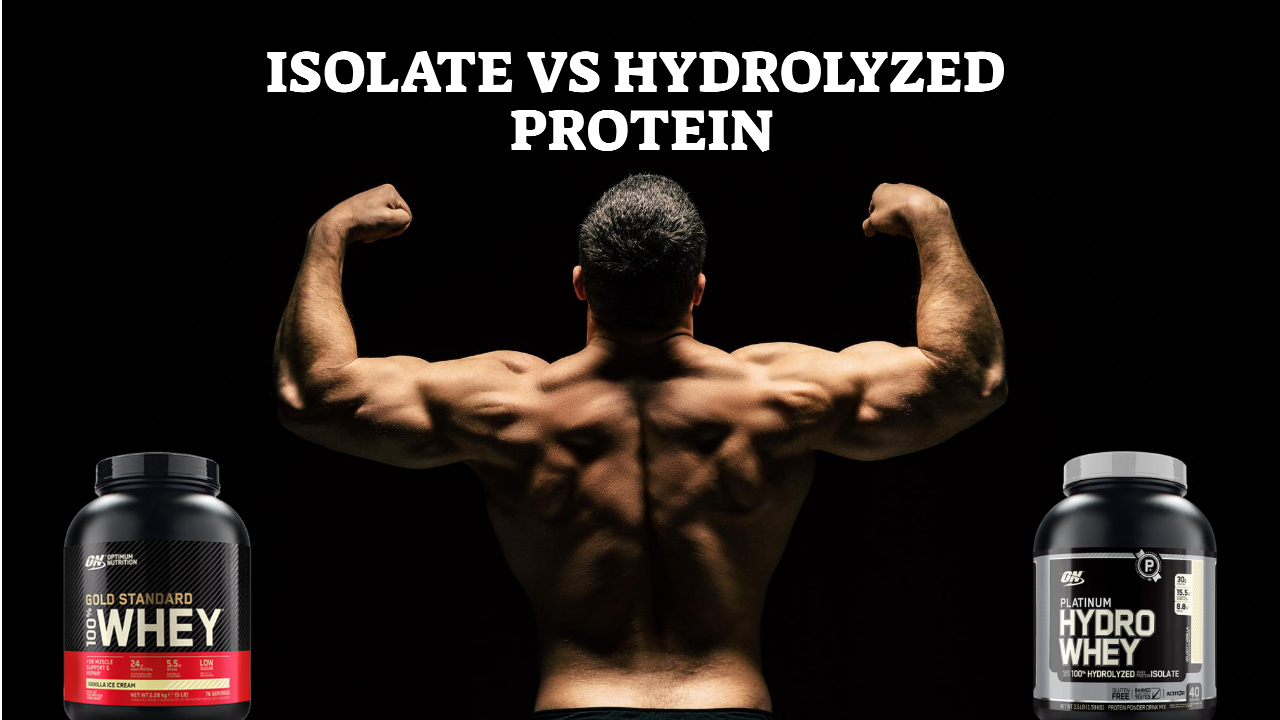 Isolate Vs Hydrolyzed Protein