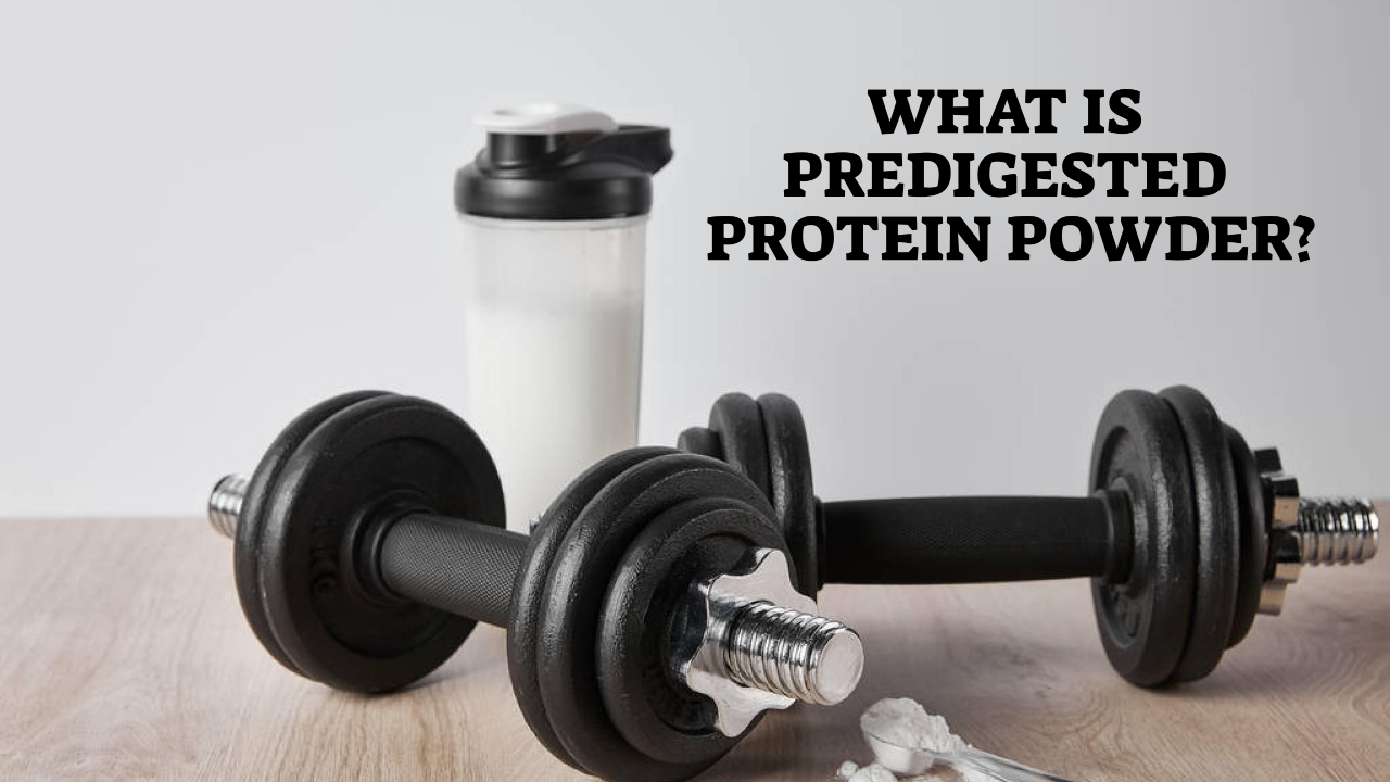 What is Predigested Protein Powder