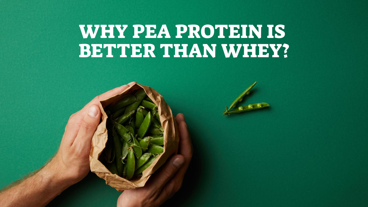 Why Pea Protein Is Better Than Whey