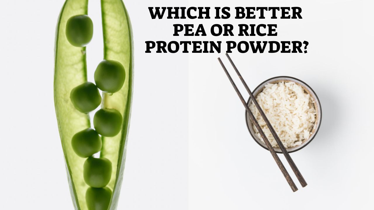 Which Is Better Pea Or Rice Protein Powder